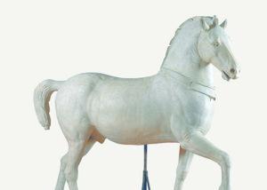 8 cavallo dopo